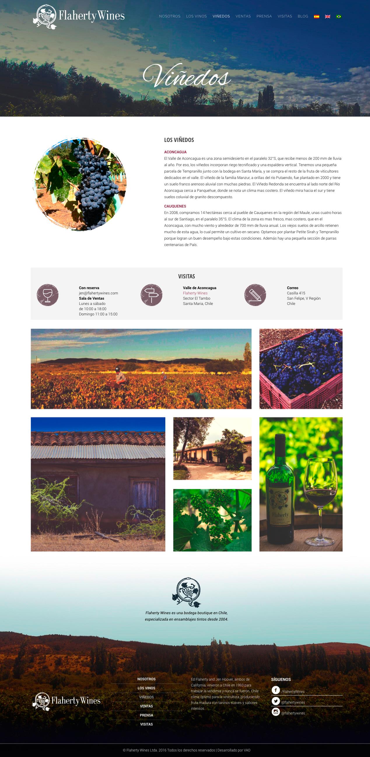 flaherty wines web viñedos